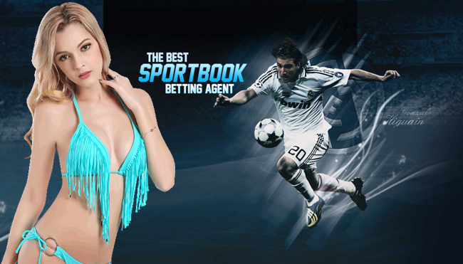 The Important Points of Online Sportsbook Betting
